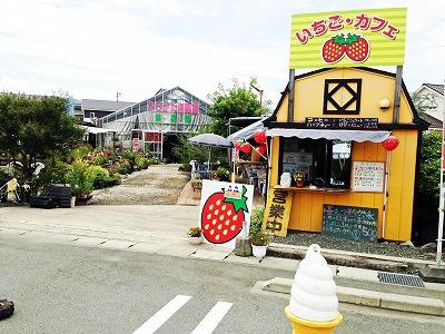 黄色の可愛い建物農園カフェ